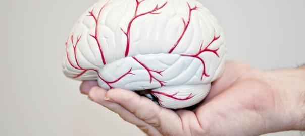 גורמים לשבץ מוחי
